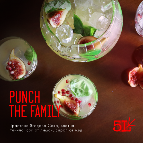 5L_ckocktail_punch_the_family